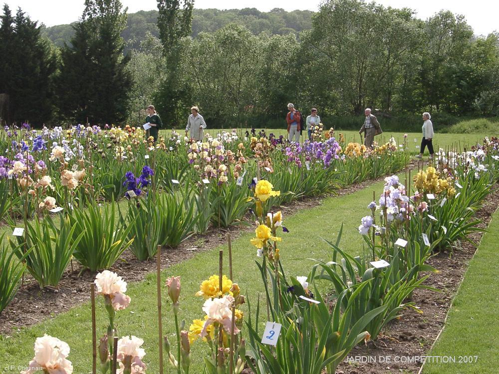 Jardin d 39 iris franciris exposition florale d 39 iris en for Les compagnons des jardins