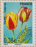 http://www.iris-bulbeuses.org/jpg/timbre/tulipe-fr-po.jpg