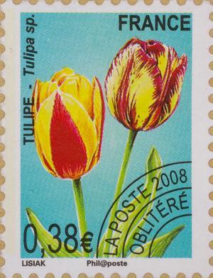 http://www.iris-bulbeuses.org/jpg/timbre/tulipe-fr-pog.jpg
